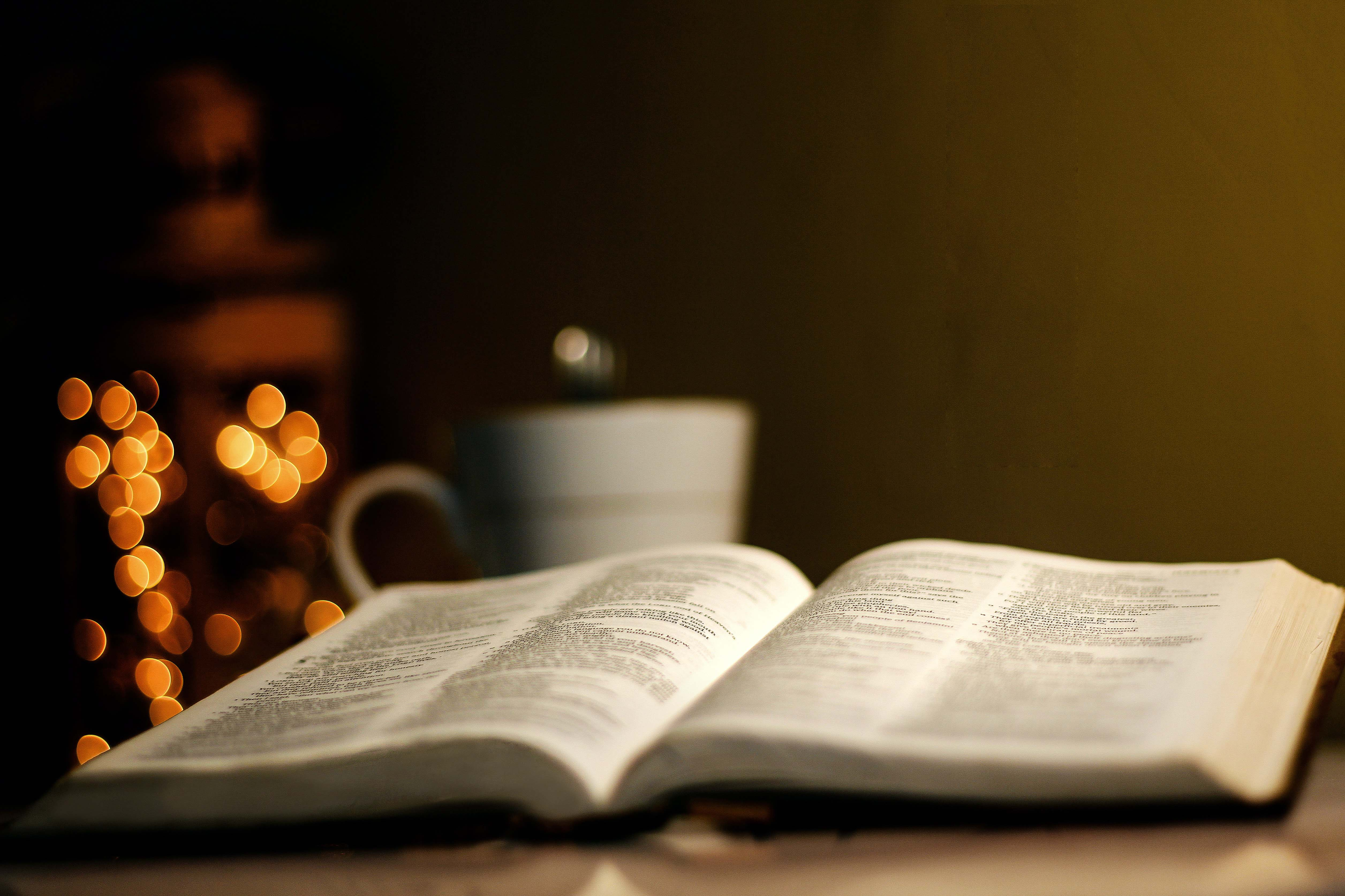 The image shows a book laying open on a table and the view is as if you're looking at it from table level. Behind the book is a coffee mug and holiday lights, both out of focus, giving the photo a soft glow.